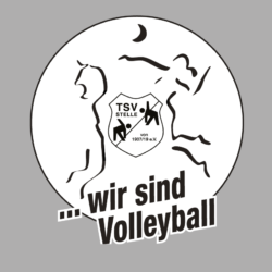 Volleyball in Stelle